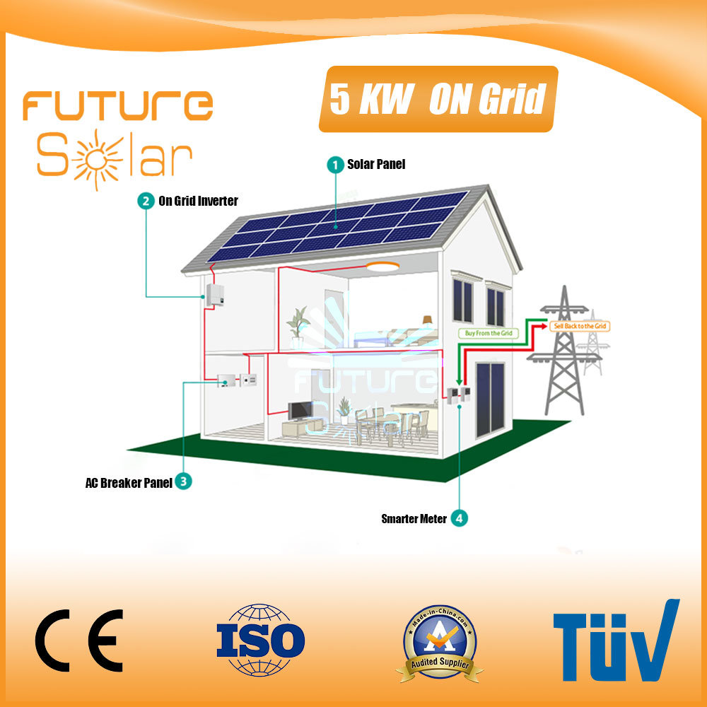 Futuresolar on Grid Solar System 5 Kw