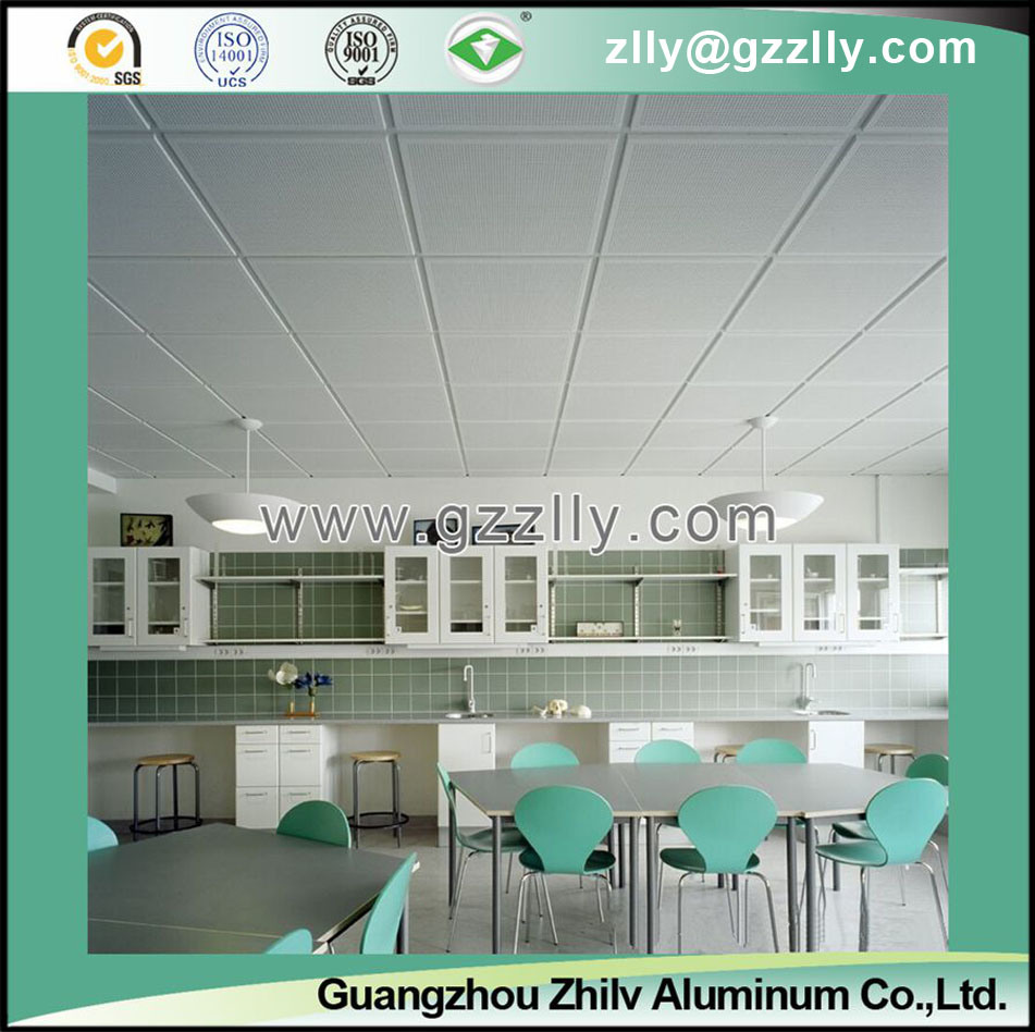 Plain Imitation of Roll Coating Ceiling for House Decoration
