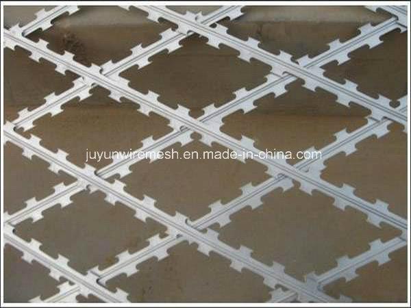 Razor Barbed Wire/Razor Wire/ Stainless Steel Razor Wire
