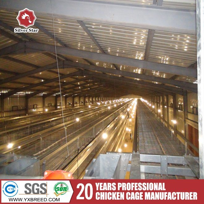 China Poultry Layer Battery Cage A3l90