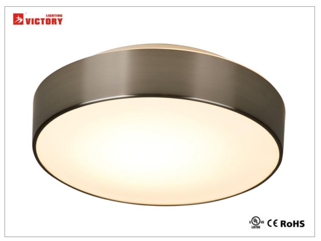 Elegant Modern Glass Project LED Ceiling Light