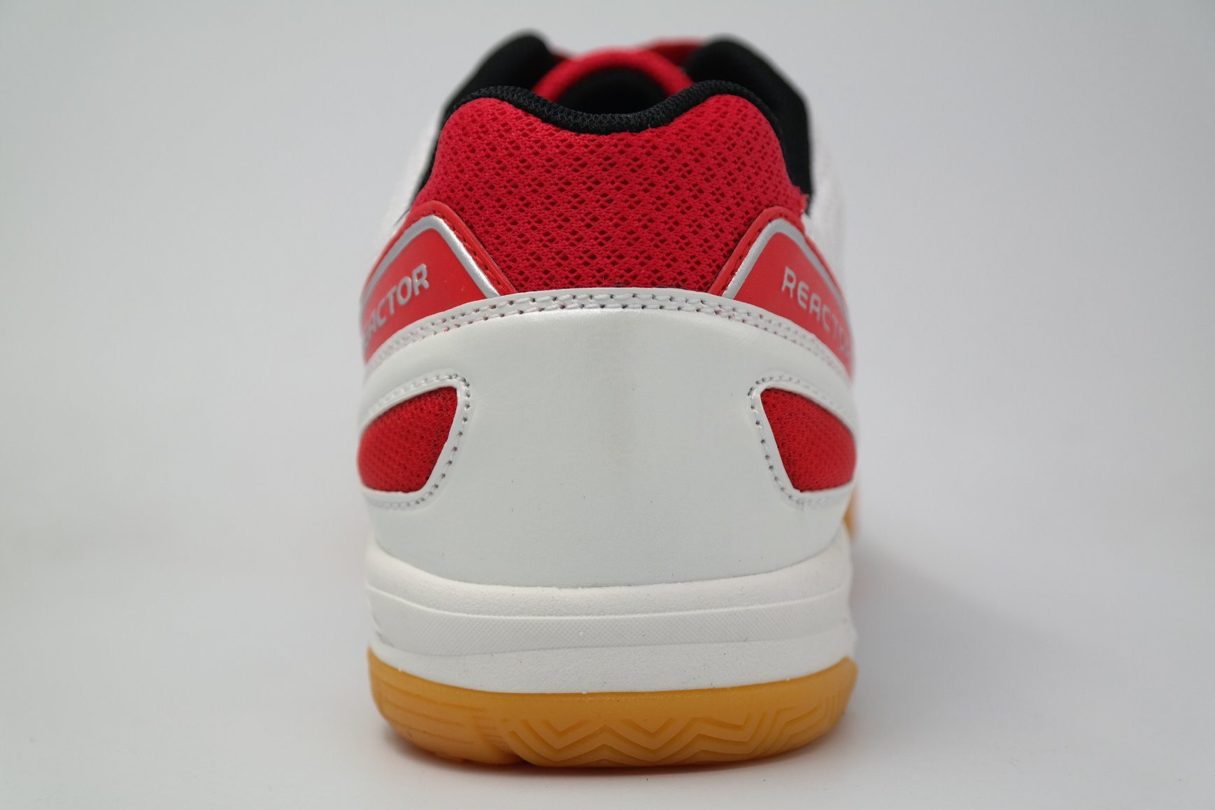 Men Sports Table Tennis Footwear Badminton Court Shoes (AK9095)