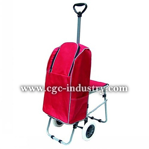 Usaa Car Loan >> shopping trolley extendable handle