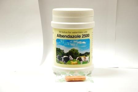 Albendazole Bolus 2500mg