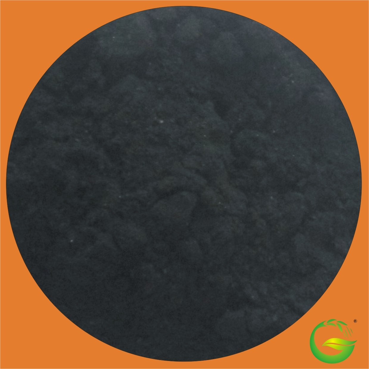 Alga Seaweed Extract Powder 100% Water Soluble