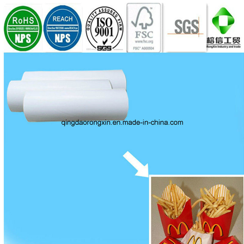 Folding Box Board PE Coated Paper for  Packaging