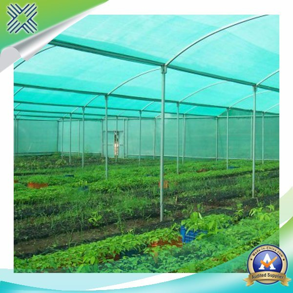 HDPE Shade Net/Shade Netting