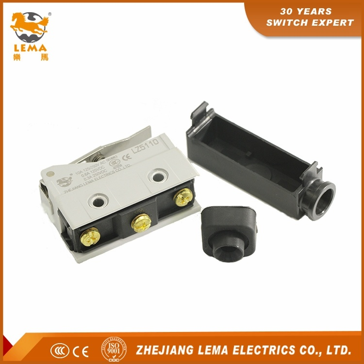 Lema Short Hinge Lever 10A 250VAC CCC Ce Approvals Lz5110 Sealed Limit Switch