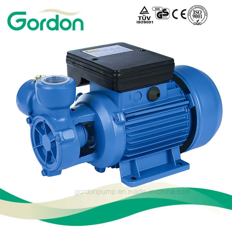 Household Electric Periphearal Pump with Copper Wire for Water Supply