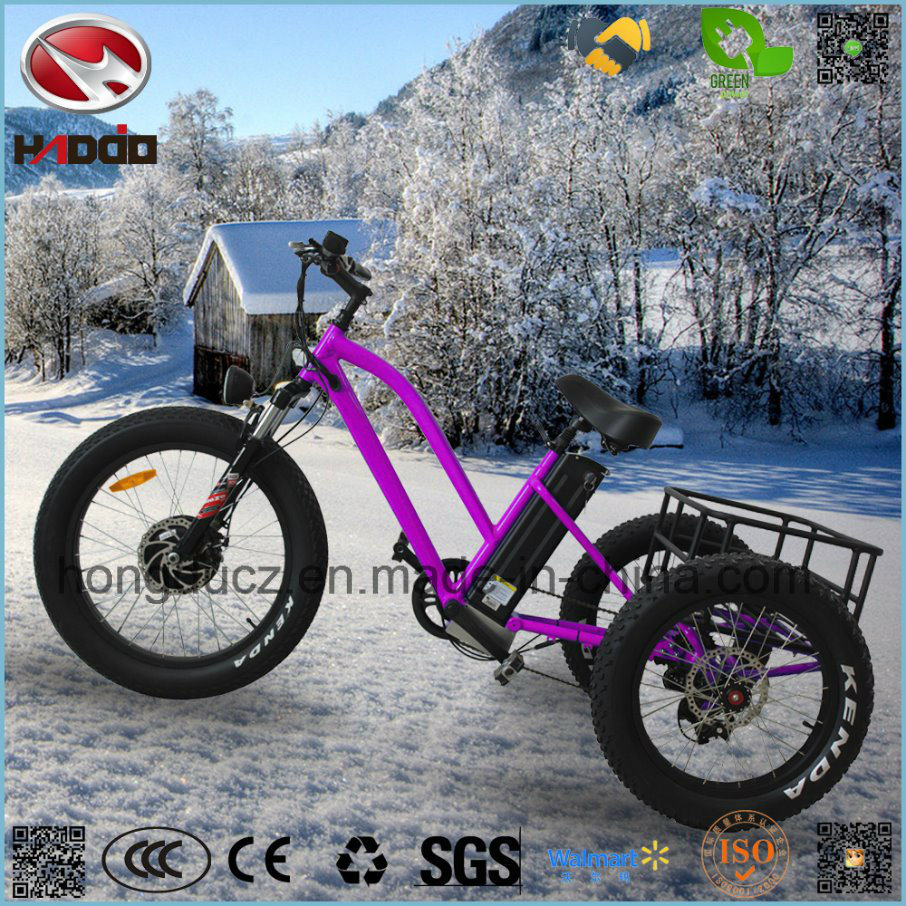 Fat Tire 3 Wheel E-Scooter 500W Rear Motor Double Disk Brake Tricycle