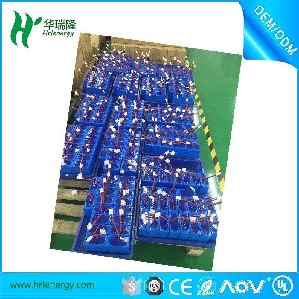 Lithium Polymer Battery 11.1V 12.5ah Electric Bike Battery