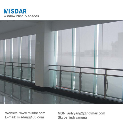 Blackout Electric Roller Shade System