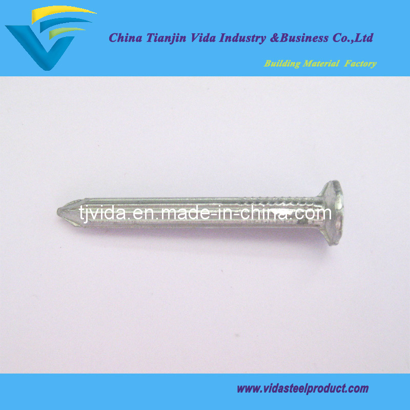 "Galvanized Steel Concrete Nails (2-1/2"")"