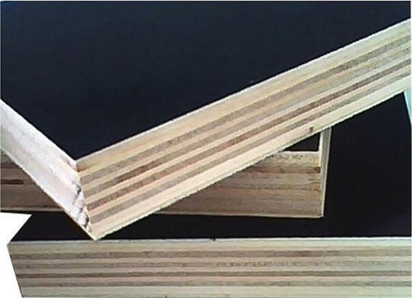 Borwn Film Faced Poplar Plywood