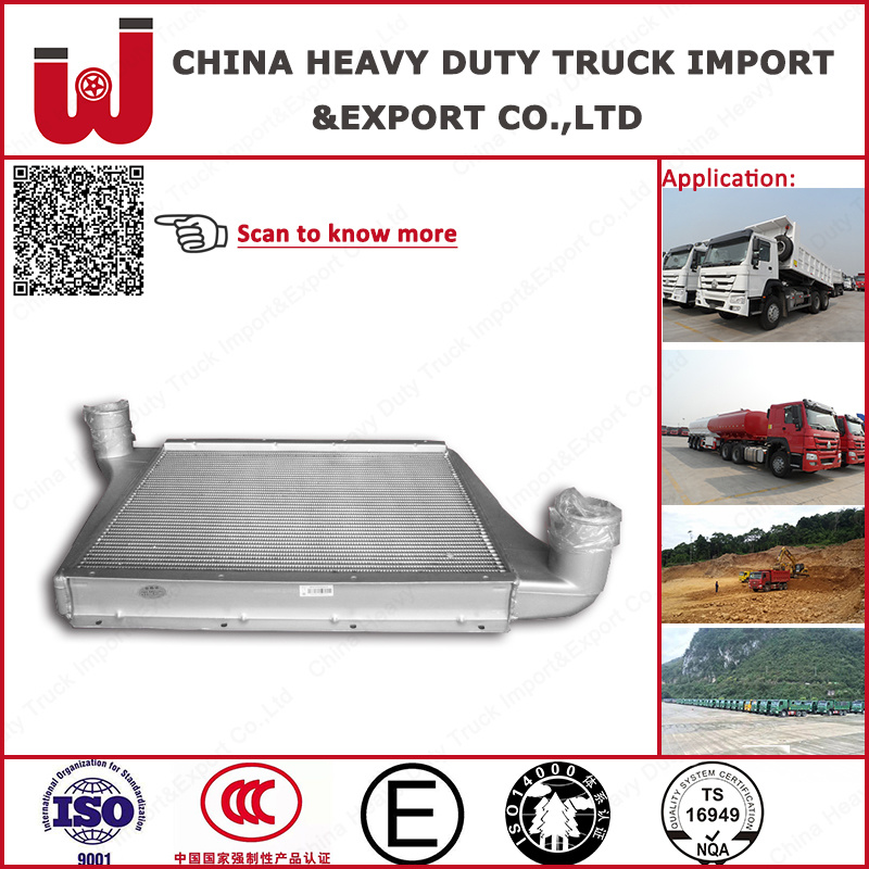 HOWO Aluminum Plate-Fin Intercooler for Heavy Truck (Wg9725530020)