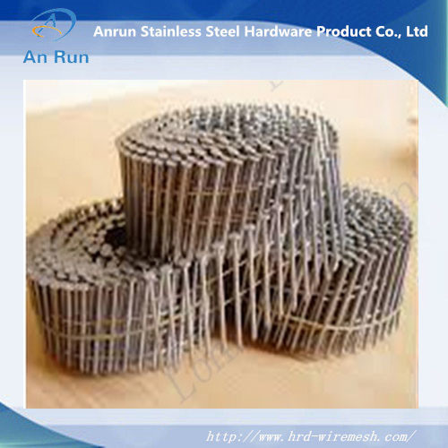 High Quality Hot Sell Steel Nail
