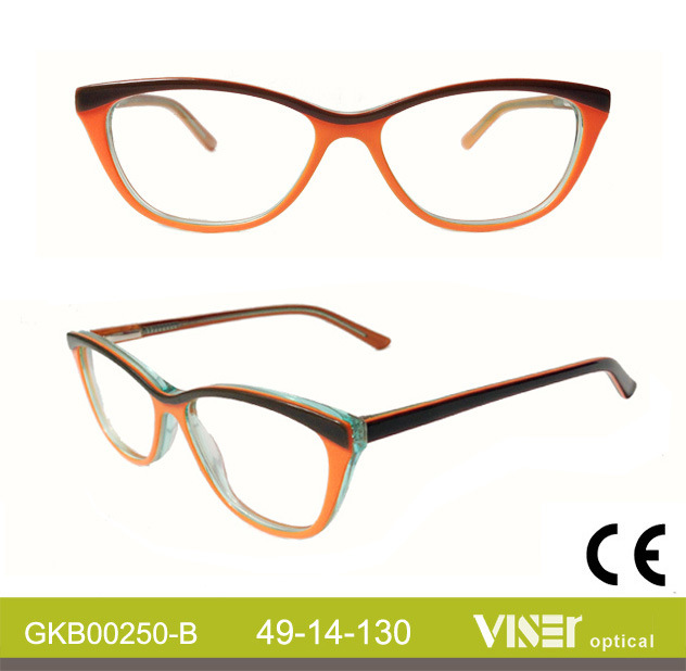 Fashion Kids Eye Glasses Optical Frames (250-A)