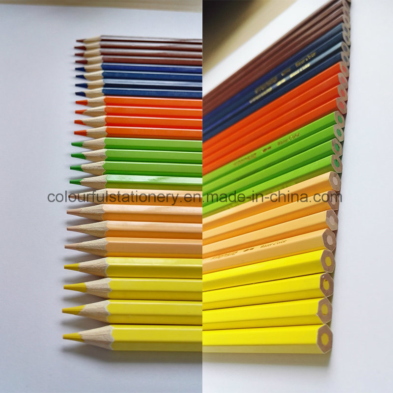 Wood Color Pencil Set for Office Supply