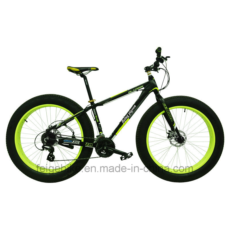 "2015 New Product 26"" *4.0 Fat Tire Mountain Bike (FP-MTB-FAT01)"