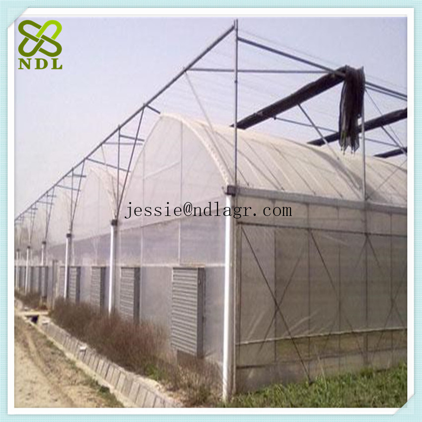 Double Layer Plastic Grow Film Green House