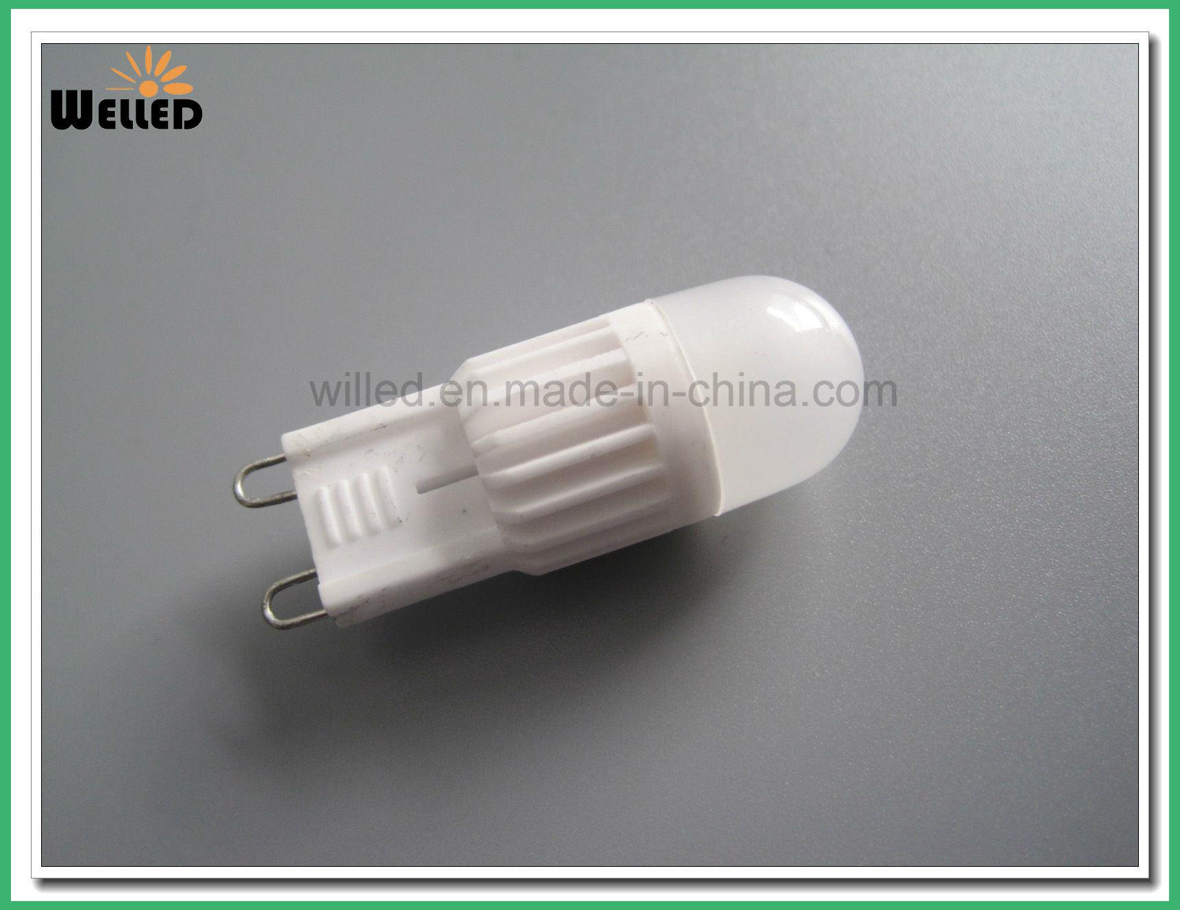 Decorative G4 Ceramic PC LED Light Lamp 2W Dcac12V for Car Light