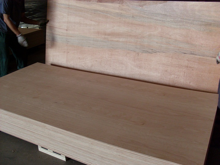 Competitive Price 9mm Bintangor Face E2 Glue Combi Core Plywood