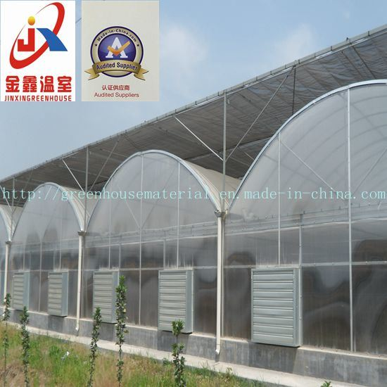 China Manufacturer Greenhouse in Factory Price and Good Quality