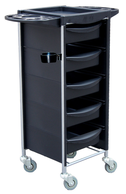 Low Price Hair Tool of Salon Equipment and Hair Trolley (DN. A139)