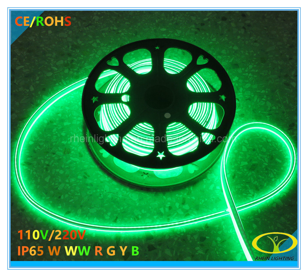 Super Bright IP65 LED Neon Light with Ce RoHS Certification
