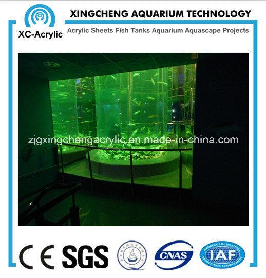 Big Cylindrical Aquarium