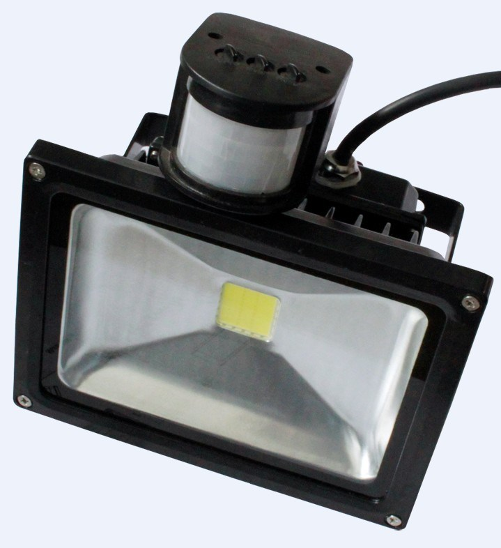 PIR LED Flood Lights (BR-FL-10W-01-PIR) - China Led Sensor Flood Light