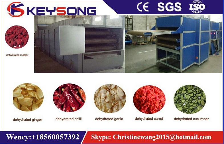 Vegetable Drying Machine, Fruit Dehydrator