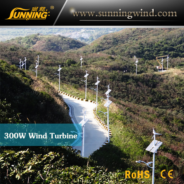 LED Lights with Wind Solar Power (100W LED Lamp)