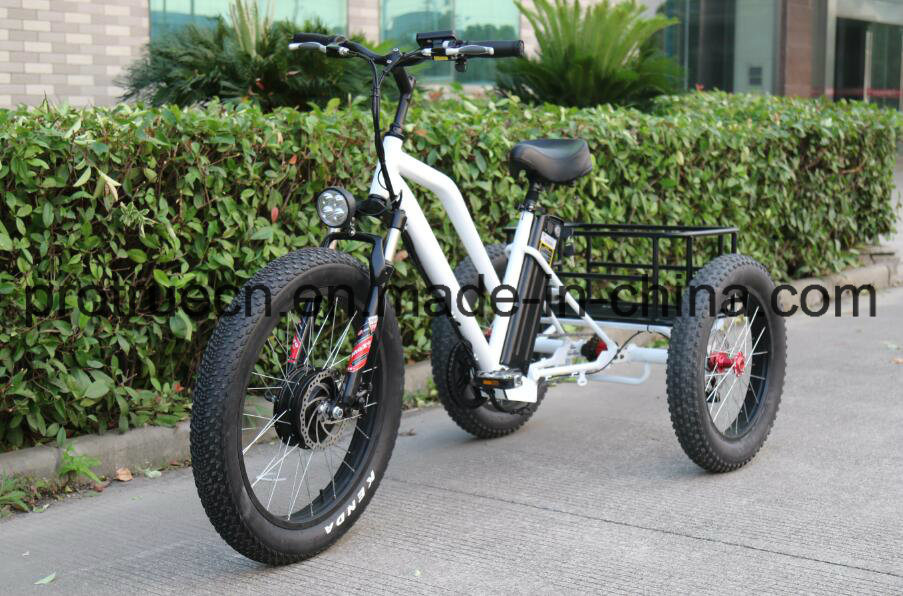 3 Wheel Electric Bicycle with Small Cargo