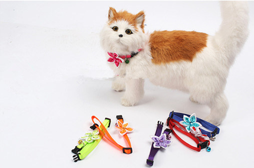 Pet Product Dog Cat Puppy Colorful Collar (C011)