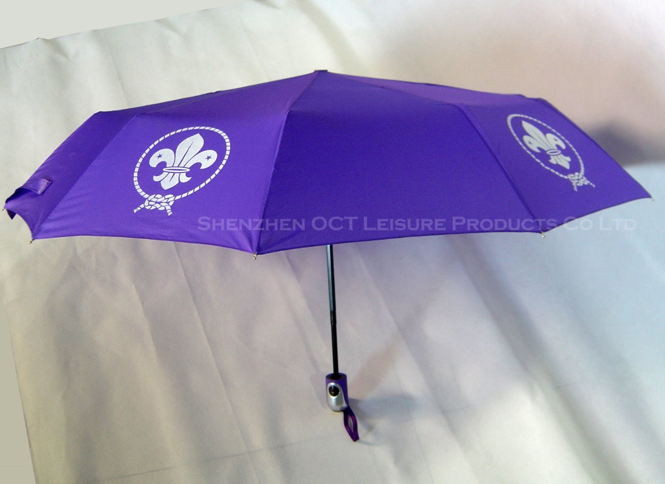 10 Ribs Auto Open&Close Umbrella with Strengthened Design