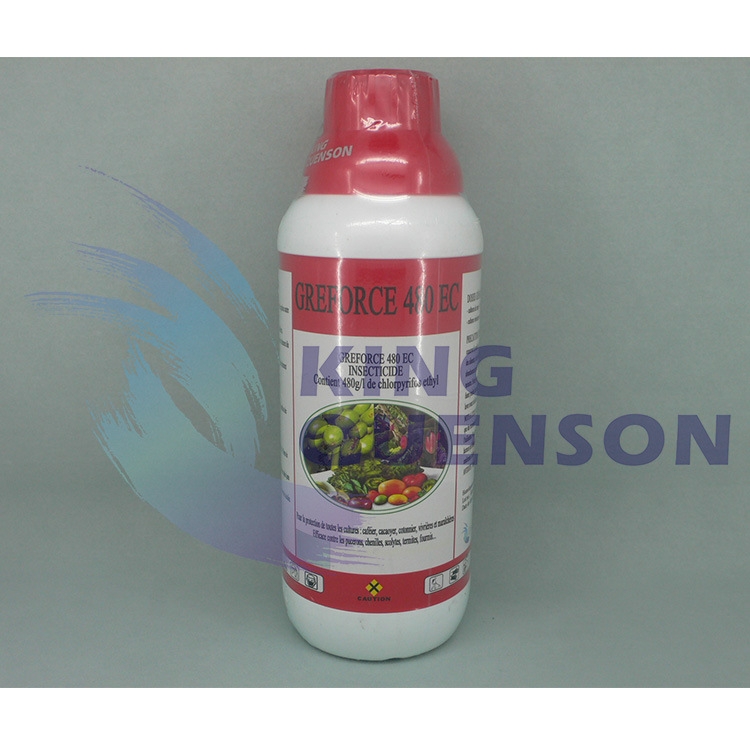 King Quenson Hot Selling Chlorpyrifos Insecticide for Pest Control