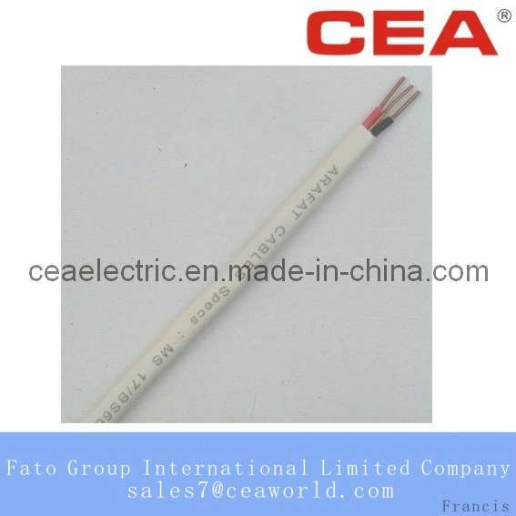 Flat Twin With Earth Core Cable