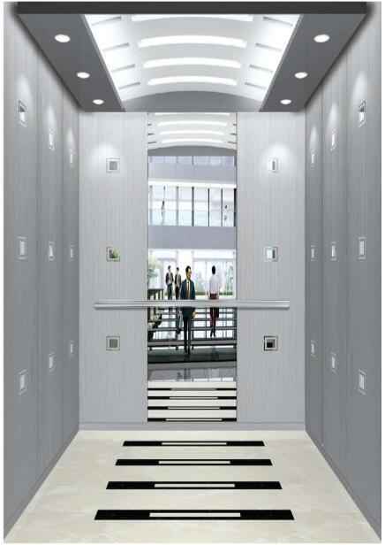 Gearless Vvvf Drive Home Lift with German Technology (RLS-246)