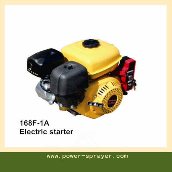 6.5HP 196cc Four-Stroke Single Cylinder Gasoline Engines with CE Standardwx-168f-1A