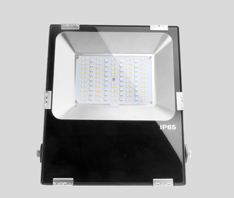 2.4G RF Remote Controlled LED Floodlight 50W