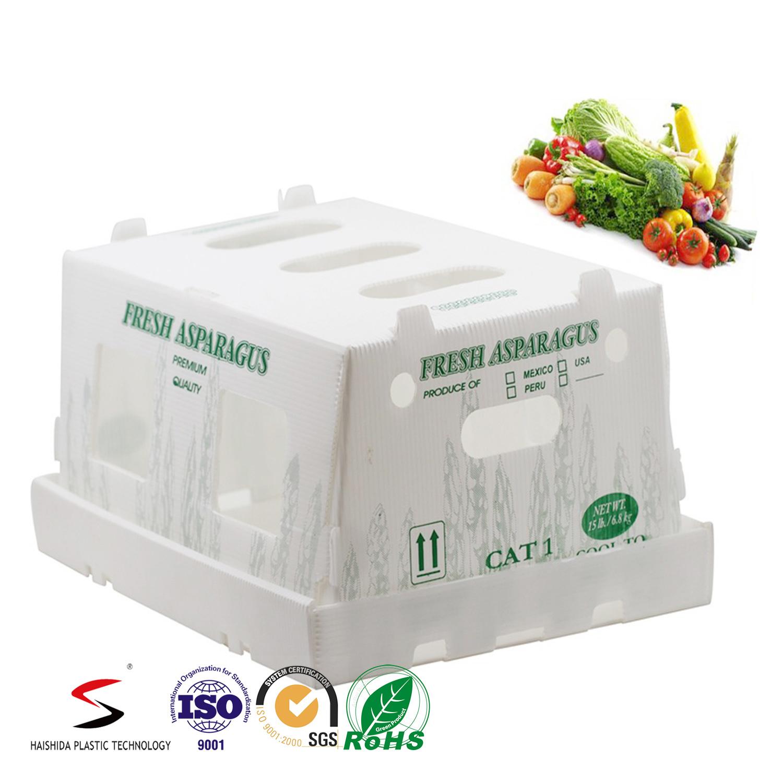 Twinwall PP Box Plastic Carton PP Fruit Box Recyclable Polypropylene Corflute Fruit Box Folding Box