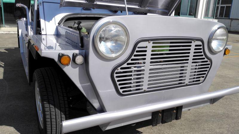 Gasoline Engine Tourist Coach Sightseeing Car, Moke Car