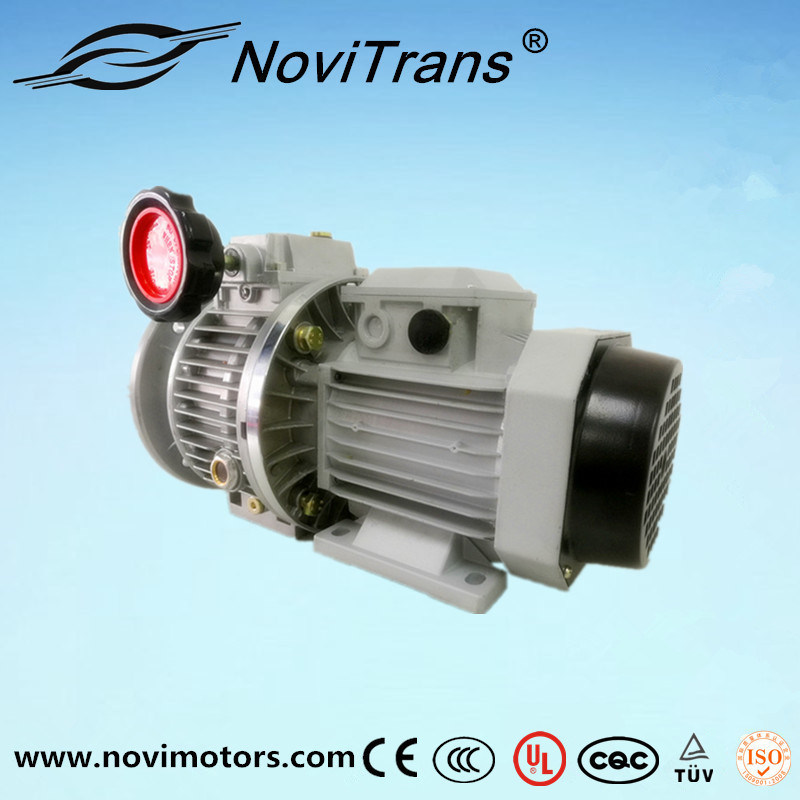 0.75kw AC Permanent Magnet Motor with Speed Governor (YFM-80A/G)