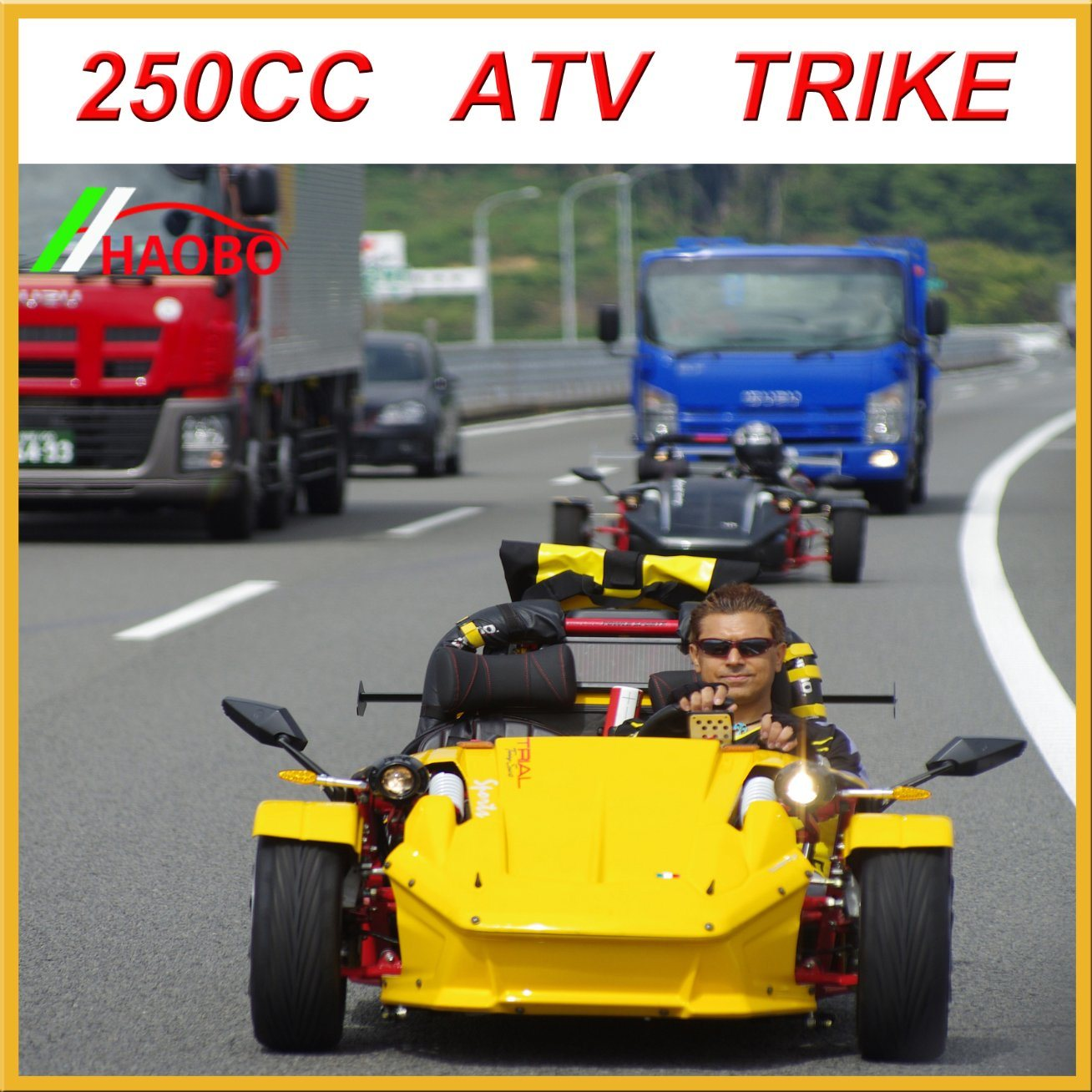 300cc Trike Scooter with Windshiled