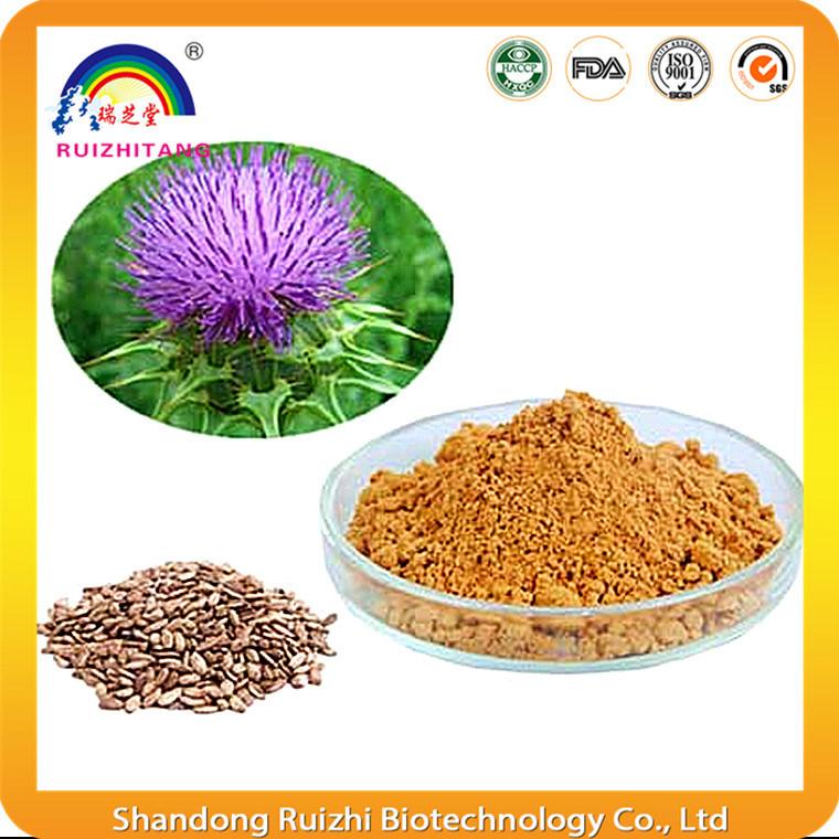Plant Extract Milk Thistle Extract Powder