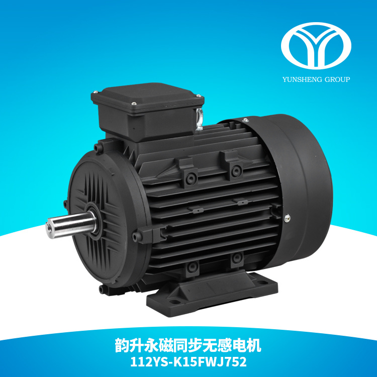 AC Permanent Magnet Synchronous Motor 7.5kw 3000rpm