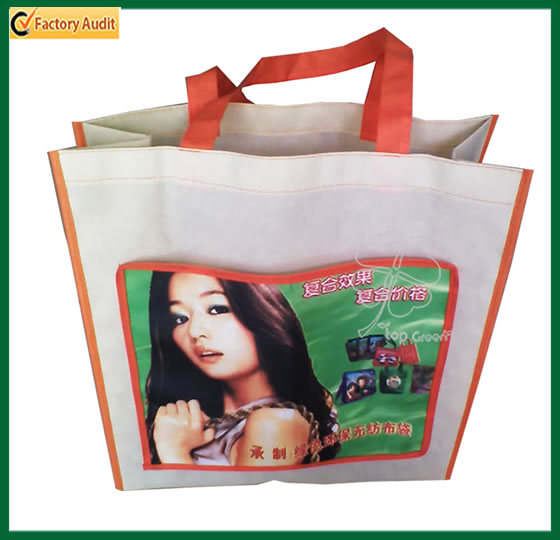 Fashion Designs Recycled Gift Shopping Bag Laminated Bag (TP-SP165)