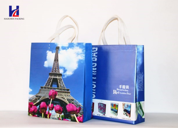 Hot Sale Non-Woven Fabric Shopping Bag