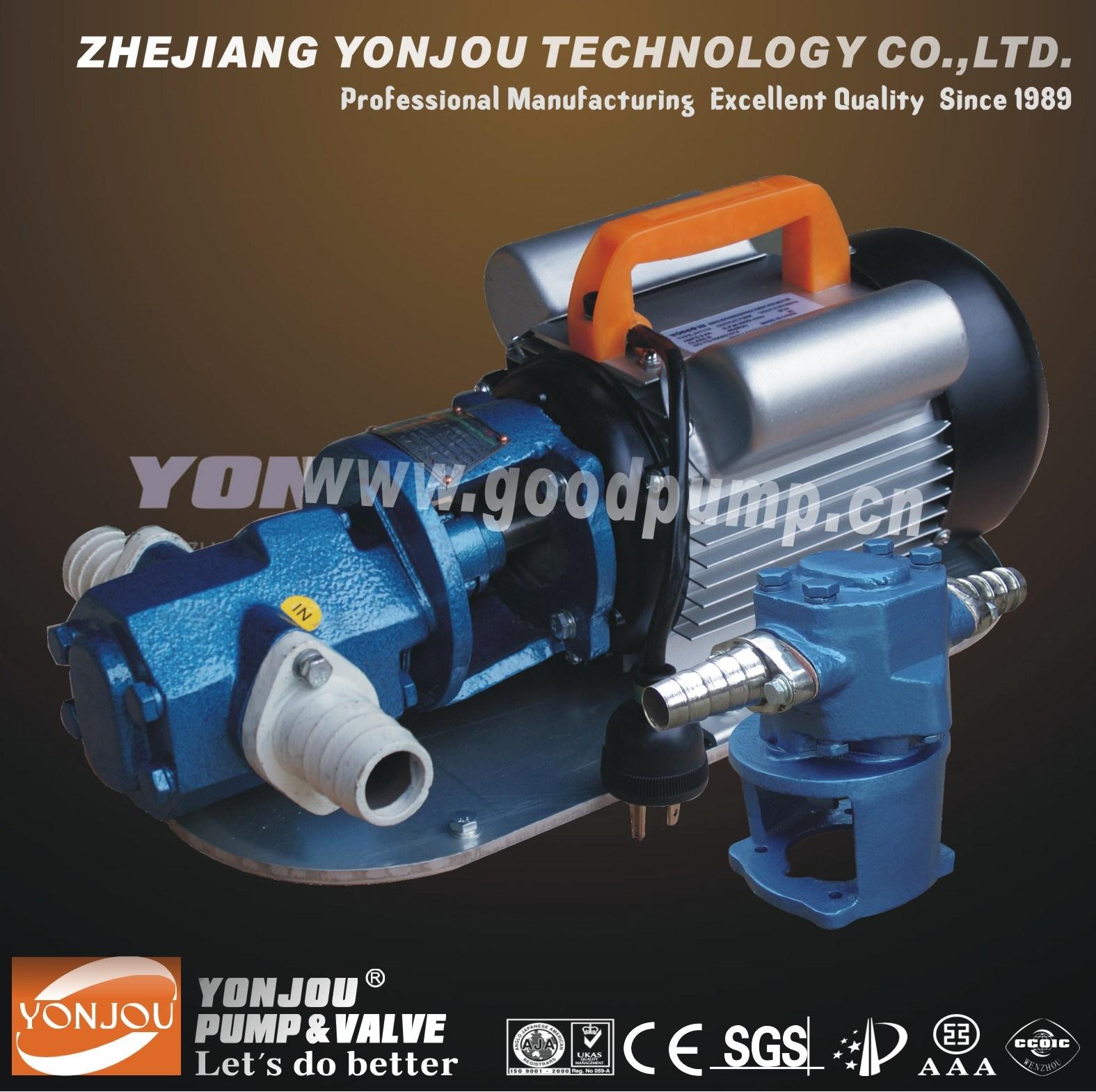 Portable Gear Oil Electrical Pump (WCB)